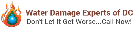 Water damage experts dc logo